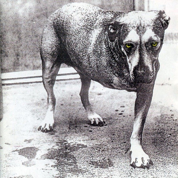 ALICE IN CHAINS : ALICE IN CHAINS (CD)