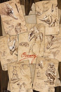 plakat FANTASTIC BEASTS - FIELD NOTES