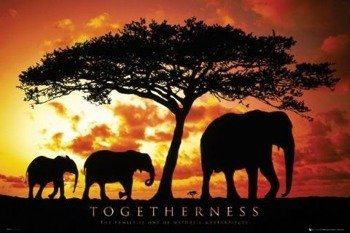 plakat MOTIVATIONAL - TOGETHERNESS