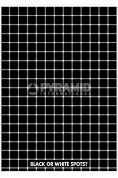 plakat OPTICAL ILLUSION - BLACK OR WHITE SPOTS?