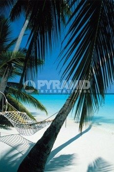 plakat PALM VIEW - HAMMOCK