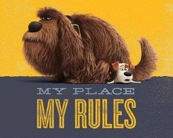 plakat SECRET LIFE OF PETS - MY PLACE MY RULES