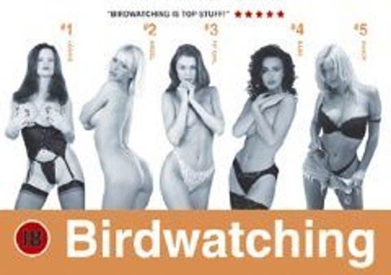 plakat BIRDWATCHING