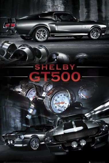 plakat FORD SHELBY GT500