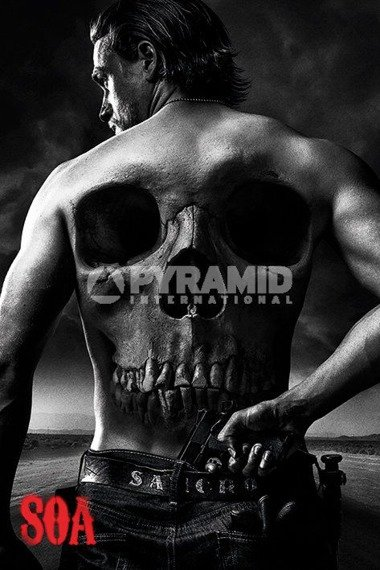 plakat SONS OF ANARCHY - SKULL