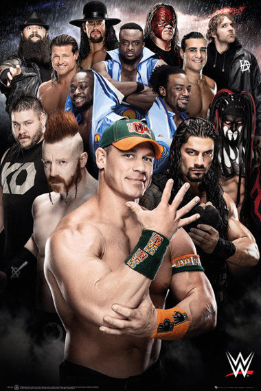 plakat WWE - SUPERSTARS 2016