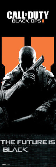 plakat na drzwi CALL OF DUTY -BLACK OPS II